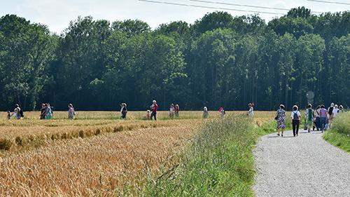 08.06.2018: Schöpfungswanderung für Familien in der Gänsschütt mit Pfarrer Toni Schatz.